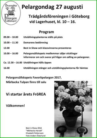 Program-2017b